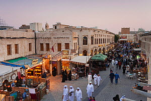 The restored Souq Waqif with mud rendered shops and exposed timber beams at dusk, Doha, Qatar, Arabian Peninsula 2011. No release available.  -  Gavin Hellier