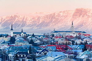 View over the Churches and cityscape of Reykjavik with a backdrop of snow capped mountains, Iceland 2006  -  Gavin Hellier