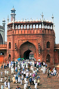 People leaving the Jama Masjid, Friday Mosque, after the Friday Prayers, Old Delhi, Delhi, India 2011  -  Gavin Hellier
