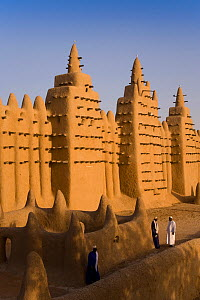 Djenne Mosque, the largest mud structure in the world, Djenne is a UNESCO World Heritage Site, Niger Inland Delta, Mopti Region, Mali 2006. No release available.  -  Gavin Hellier
