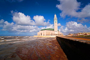 Shoreline view of Hassan II Mosque, the third largest mosque in the world, Casablanca, Morocco, 2011  -  Gavin Hellier