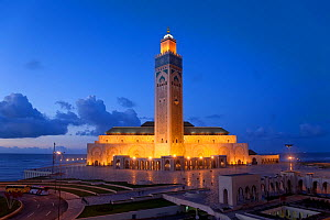 Hassan II Mosque, the third largest mosque in the world illuminated at night, Casablanca, Morocco, 2011  -  Gavin Hellier