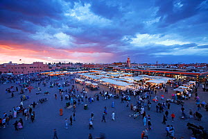 Elevated view over the Djemaa el-Fna at sunset, Marrakech, Morocco, 2011. No release available.  -  Gavin Hellier