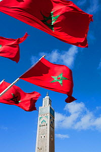 Flags of Morocco waving in the wind and Hassan II Mosque, the third largest mosque in the world, Casablanca, Morocco, 2011  -  Gavin Hellier