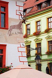 Sighisoara, medieval citadel, Piata Cetatii, detail of painted houses in the central cafe lined square in the citadel, surrounded by cobbled streets lined with colourfully painted 16th Century burgher...  -  Gavin Hellier