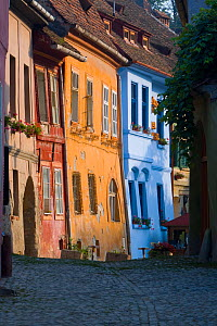 Sighisoara, a medieval citadel, cobbled streets lined with colourfully painted 16th Century burgher houses, Transylvania, Romania 2006  -  Gavin Hellier