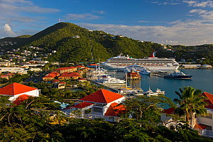Elevated view over Charlotte Amalie and the Cruise Ship dock of Havensight, St Thomas, US Virgin Islands, Leeward Islands, Lesser Antilles, Caribbean, West Indies 2008  -  Gavin Hellier