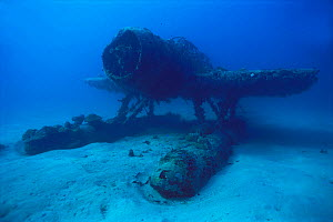 Wreck of Aichi E13A, Japanese World War Two float plane, sunk by American fighters, Solomon Islands.  -  Michael Pitts,Michael Pitts