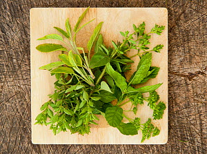 Cooking herbs, including mint and parsley, on chopping board  -  Niall Benvie