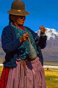 Aymara shepherdess spining llama wool, Sajama. Bolivia, October 2011. No release available.  -  Daniel Heuclin