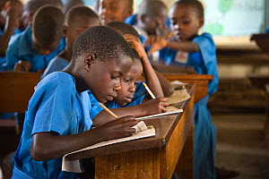 Students of Kasiisi School in class, funded by the Kasiisi School Project, just outside of Kibale National Park, Uganda, August 2011. No release available.  -  Suzi Eszterhas