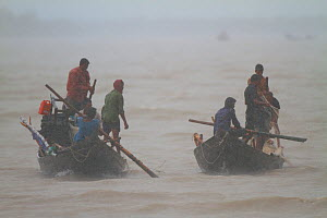 Fishermen in boats on river during monsoon rain, Sundarbans, Bangladesh, September 2011. No release available. - Mark MacEwen