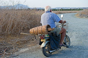 Illegal trapper with limesticks on back of motorcycle going to orchard to set up Cyprus, September 2011 - David Tipling