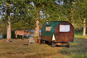 Old Gypsy trailer / caravan designed to be horse-drawn,  with pony, Loire atlantique, France, September 2012  -  Loic Poidevin