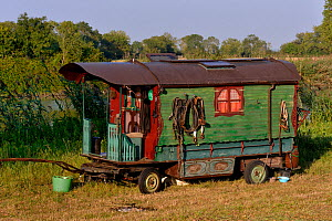 Old Gypsy trailer / caravan designed to be horse-drawn,   Loire atlantique, France, September 2012  -  Loic Poidevin
