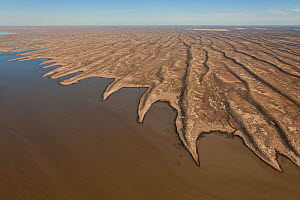 Aerial of Simpson Desert Regional Reserve where  lakes amongst the sand dunes. Normally dry, the lakes only have water during a very wet season, South Australia, June 2011  -  Jurgen Freund,Jurgen Freund