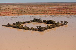 Aerial of Dam in the outback serving as watering holes for cattle. Dam water comes from bore water from the Great Artesian Basin, South Australia, Australia, June 2011  -  Jurgen Freund
