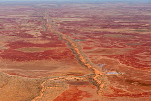 Aerial of Sturt Stoney Desert with gibber rocks. Gibber rocks are millions of years wind and water weathered chalcedonised sandstone with a hardened crust of soil cemented silica, iron and manganese,... - Jurgen Freund