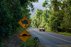 Cape Tribulation cassowary sign and speed bump sign, vandalised to a 'roadkill' before and after sign, Queensland - Jurgen Freund