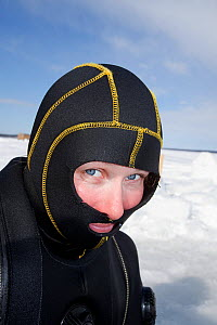 Scuba diver with special head hood for cold water diving, Arctic circle Dive Center, White Sea, Karelia, Northern Russia, April 2009. No release available.  -  Franco Banfi