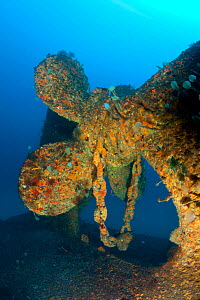 Propeller of Viana wreck, a vessel set on fire in the Horta harbour. In attempt to contain the fire, the boat was sunk there. After a few months, the vessel was mended to float and transported to the...  -  Franco Banfi