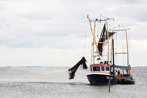 Dutch fishing vessel on the Maarkermeer cleaning its gillnets and fish traps. Afsluitdijk, The Netherlands, July  -  Florian Möllers