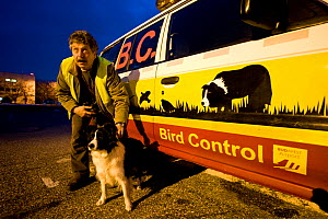 Head of Bird control departement, with border collie dog, Budapest Airport February 2009 - Milan Radisics