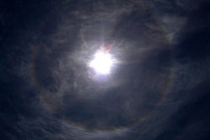 Halo around sun, Tibetan Plateau, June 2010. Halos are a sign of high thin cirrus clouds drifting 20,000 feet or more above our heads. These clouds contain millions of tiny ice crystals. The halos are... - Ben Lascelles