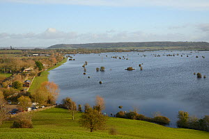 View from Barrow Mump hill of flooded Southlake and Aller moors, after weeks of heavy rain, Somerset Levels, UK, January 2013. - Nick Upton