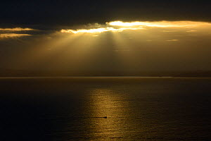 Sun rays between clouds over calm sea, Morgat, Crozon pennisula, Brittany, France, November 2012  -  Fabrice Cahez