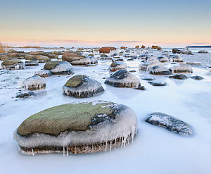 Ice covered rocks along coast of the Baltic Sea, Northern Estonia. - Sven  Zacek