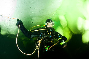 Scuba diver under ice, Arctic circle Dive Center, White Sea, Karelia, northern Russia, March 2010  -  Franco Banfi