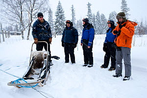 Lauri, a guide for sled dogs excursions, explaining the use of the sledge to tourists, inside Riisitunturi National Park, Lapland, Finland  -  Franco Banfi
