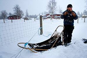 Lauri, a guide for sled dogs excursions inside Riisitunturi National park explaining how to drive the sledge, Lapland, Finland  -  Franco Banfi