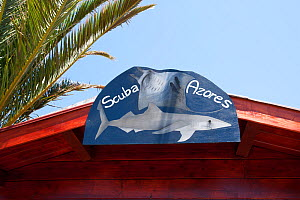 Scuba Azores sign with Great Blue shark, (Prionace glauca) image, Pico Island, Azores, Portugal, Atlantic Ocean  -  Franco Banfi