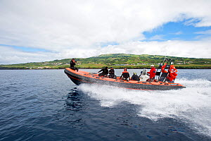 Divers on zodiac travelling to diving place, Pico Island, Azores, Portugal, Atlantic Ocean  -  Franco Banfi