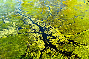 RF- Aerial view of the Okavango delta, Botswana, May 2010. - Denis-Huot