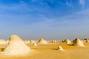 Chalk rock formations caused by sand storms, White desert in the Sahara, Egypt, February 2009  -  Denis-Huot