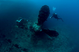 Diver on the wreck of the Italian cargo ship 'Umbria' looking at the Starboard propellor, scuttled in Port Sudan 10th June 1940, Red Sea, March 2008  -  Michael Pitts