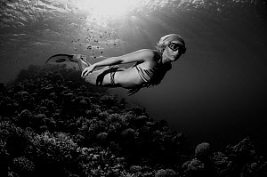 Sara Campbell, World free diving champion, Blue Hole, Egypt, Red Sea, August 2011 - Michael Pitts