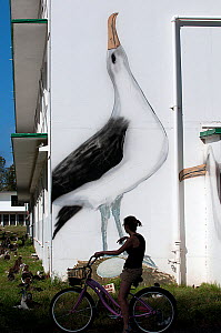 Cyclist outside Charlie Barracks with painting of  Laysan Albatross (Phoebastria immutabilis) Midway Island, Midway, Central Pacific.  -  Michael Pitts