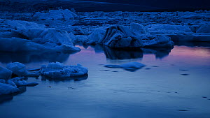 Timelapse of icebergs moving in Jokulsarlon glacial lagoon at twilight, formed from meltwater from the retreating Vatnajokull glacier, Iceland, July 2012.  -  Terry  Whittaker