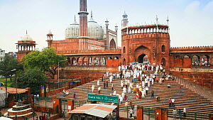 Timelapse of people leaving the Jama Masjid, Friday Mosque, after Friday Prayers, Old Delhi, Delhi, India, 2011.  -  Gavin Hellier