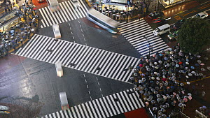 Timelapse of crowds of people crossing the centre of Shibuya shopping and entertainment district, Tokyo, Japan, 2011. - Gavin Hellier