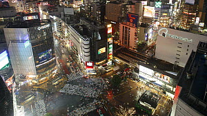 Wide timelapse shot of crowds of people crossing the centre of Shibuya shopping and entertainment district, Tokyo, Japan, 2011. - Gavin Hellier
