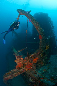 Diver on the wreck of HMNZS Canterbury, Bay of Islands, New Zealand, January 2013. Model released.  -  Sue Daly