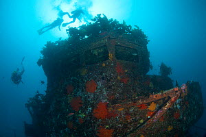 Divers on the wreck of HMNZS Canterbury, Bay of Islands, New Zealand, January 2013  -  Sue Daly
