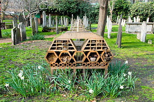 'Innvertebrate', the Boutique Bug Hotel or Insect House situated amongst gravestones, Bunhill Fields Burial Ground or Cemetery, London Borough of Islington, London, England, UK - Pat  Tuson