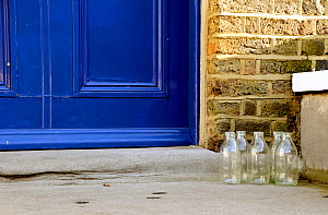 Five empty glass milk bottles on doorstep, Highbury, London Borough of Islington, England, UK  -  Pat  Tuson