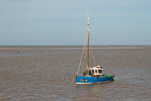 Small fishing boat at anchor, Meols, Wirral, Merseyside, England UK. April 2013. - Norma Brazendale